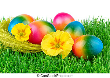Easter colored eggs on the green grass