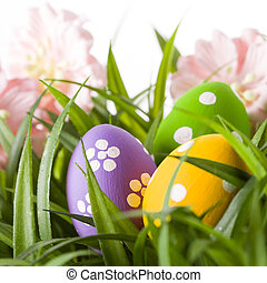 Easter colored eggs on the green grass.