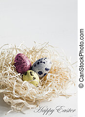 Easter colored quail eggs in hay nest on white background.