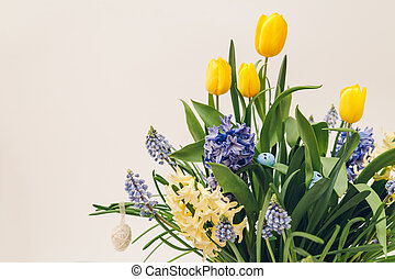 Easter decor of spring flowers with eggs. Yellow tulips, hyacinths, blue muscari grow in pot on white background.