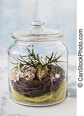 Easter Decoration: Nest, Quail Eggs in a Jar