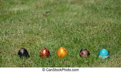 Easter egg game - Hand countdown to start Easter egg game....