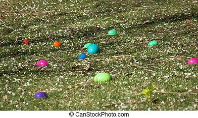 Easter Egg Hunt - Easter egg hunt in urban park.