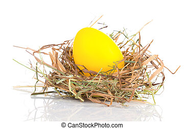 Easter Egg in a nest on a white background