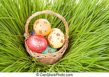 easter egg in basket on spring green grass.