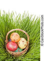 easter egg in basket on spring green grass