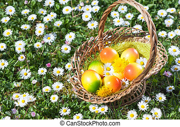 Easter Egg in Basket with Meadow Flowers