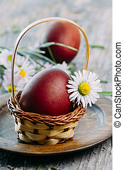 Easter Eggs and daisy flower
