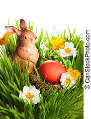 easter eggs and rabbit