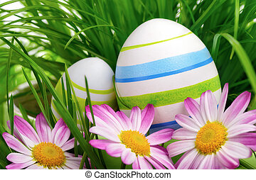 Easter eggs, flowers and grass