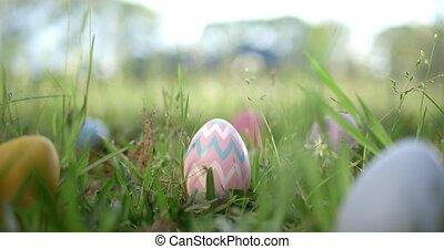 Easter eggs hidden in grass for an Easter egg hunt.