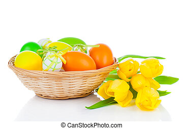Easter eggs in a basket with yellow tulips flowers, on a white background.