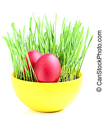 Easter eggs in a bowl with sprouted wheat.
