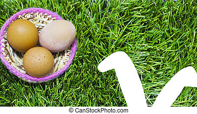 Easter eggs in nest on grass with bunny ears.