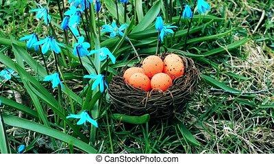 Easter eggs in orange color in nest near flowers