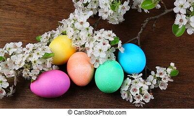 Easter eggs on a flowering tree bra