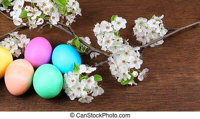 Easter eggs on a flowering tree branch - Easter eggs on a...