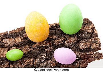Easter Eggs On Bark
