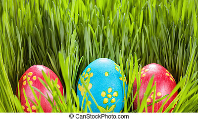 easter eggs on green grass. Spring concept.