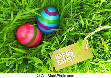 Easter eggs on green grass with tag and copy-space