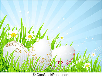Easter eggs on the spring  meadow