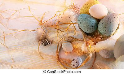 Easter Eggs on White Wooden Background