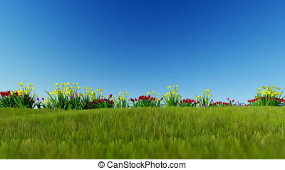 Easter eggs ongreen meadow over blue sky, panning