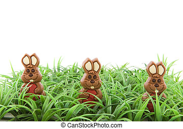Easter hares in the grass