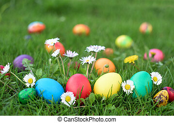 Easter hunt - colored eggs in a grass