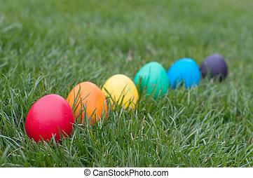 Easter hunt in a garden