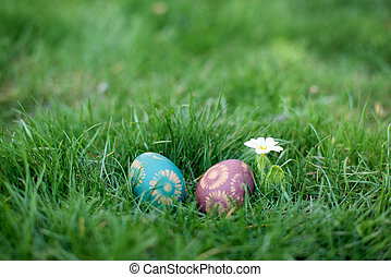 Easter hunt - two color eggs in a back yard
