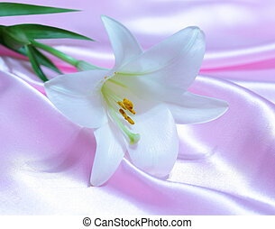 Easter Lily on Satin - Single fresh white easter lily flower...