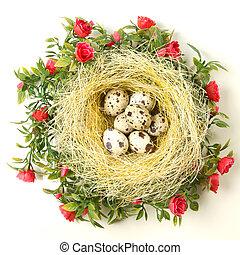 Easter quail eggs in the nest