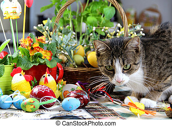 Easter rabbit and funny cat