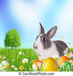 Easter rabbit in grass