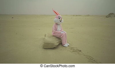 Easter rabbit sits on stone in desert. Crazy maniac or...