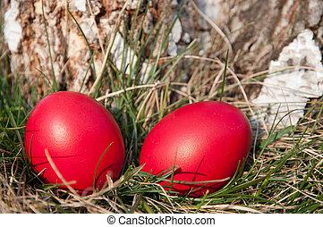 Easter red egg