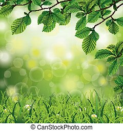 Easter Spring Background Beech Twigs Grass Daisy Flowers