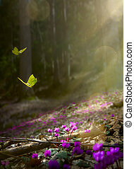 Easter spring flower background; fresh flower and yellow butterfly on spring forest background