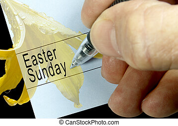 Pen-in-hand calendar notiation of the Christian holiday, Easter Sunday, Spring flower in background.