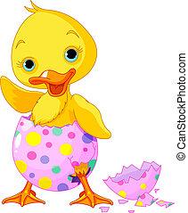 Cute Easter duckling in the broken Easter Egg.