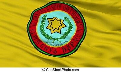 Eastern Band Cherokee Indian Flag Closeup Seamless Loop