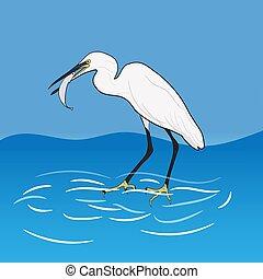 Eastern Great Egret Eating Fish In Mount, vector illustrations