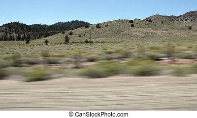 Eastern Sierra Nevada Scrub Brush - Scrub Brush Eastern...