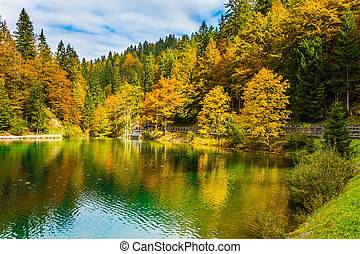 Easy ripples on the lake. The beautiful autumn forests are...