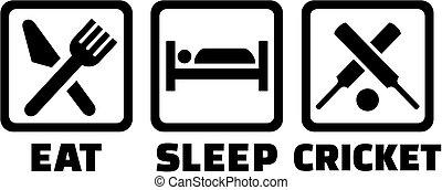 Eat sleep cricket