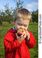 Eating an Apple - A toddler boy wearing a red jacket taking...