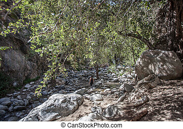 Eaton Canyon Falls Trail Hike in Pasadena near Los Angeles, California