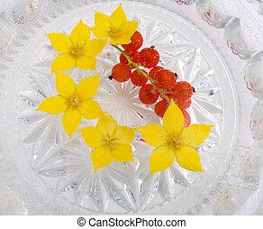 eau, baies, fleurs