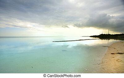 eau, clair, plage